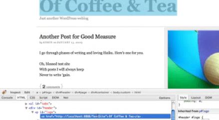 How to Use Firebug for CSS