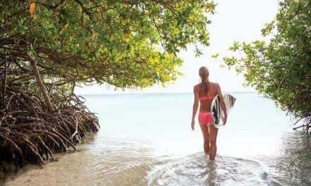"""Relax y rejuvenecimiento en la Isla Feliz durante el  """"Aloe Wellness Month"""""""