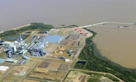 Montes del Plata es el mayor exportador forestal de Uruguay y el segundo en todos los rubros