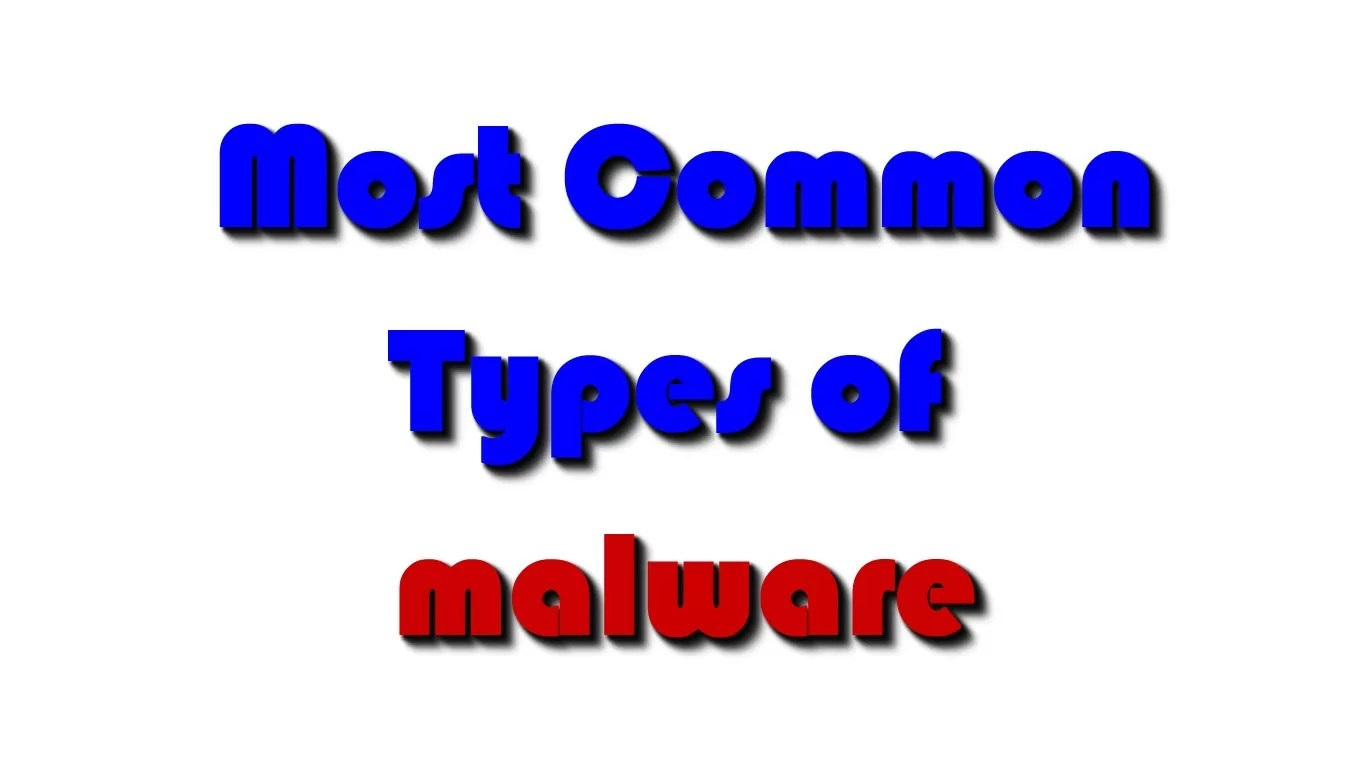 The most common types of malware