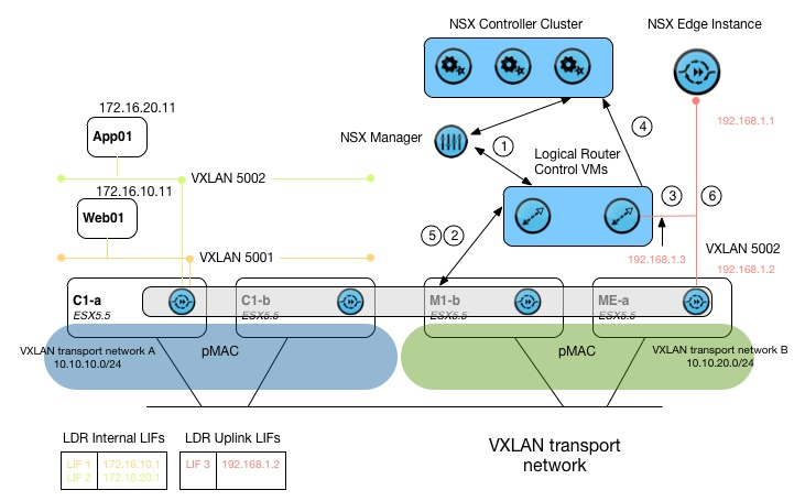 DLR Routing control