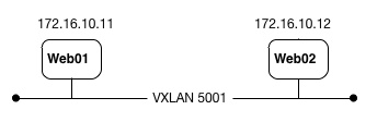 VXLAN Logical Switch across Different Hosts 01