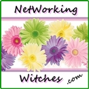 Networking Witches Reviews Giveaways & Gift Guides