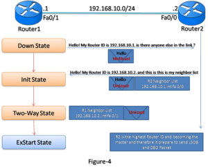 Introduction and Exclusive Explanation of OSPF Operation 7