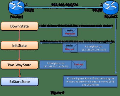 OSPF Operation 7