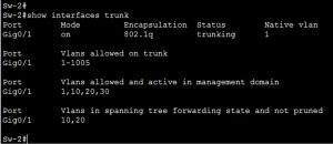 Trunk Links