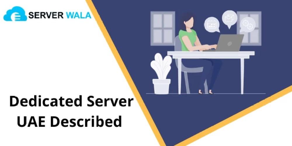 Motorized Curtains Dubai - Blackout, Carpets 2