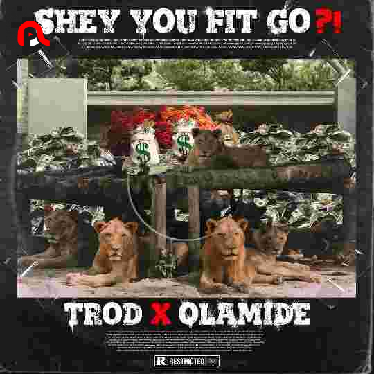 Trod – Shey You Fit Go? Ft. Olamide (Mp3 Download)