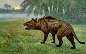 Ein Hyaenodon steht auf einer Wiese vor Palmen und fletscht die Zähne vom Betrachter abgewandt
