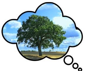 Denkblase mit einzeln stehendem Baum