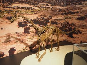 baby-Sauropode