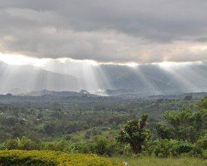 Ruwenzori-Berge im Regen