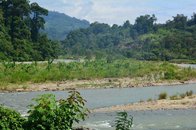 Flussinsel Sumatra
