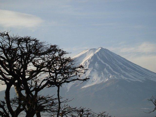Mount Fuji, der Wolf ist heute auch Schutzgeist der Natur