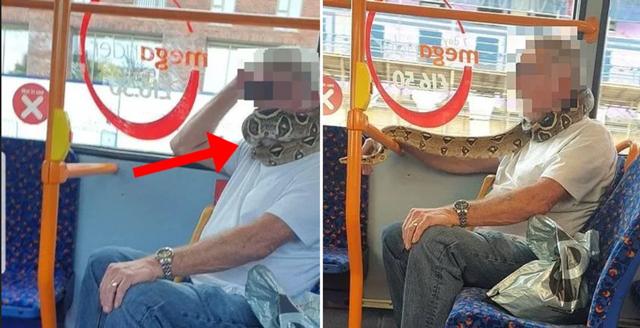 Python Bus Manchester