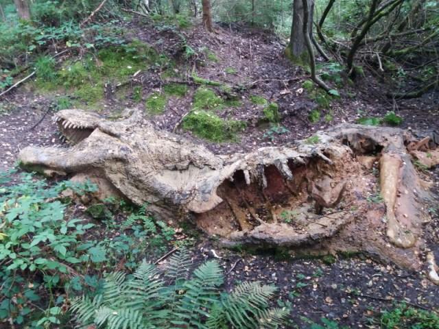 Tyrannosaurus-Kadaver