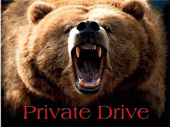 digital private drive sign