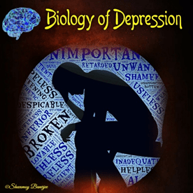 Depression: In search of the Biology behind it
