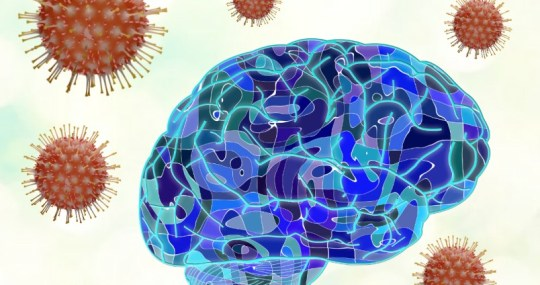 Effect of SARS-CoV-2 Infection on Brain and Nervous System: Attention Needed