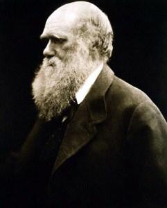 Charles Darwin. 1868 von Julia Margaret Cameron angefertigte Fotografie