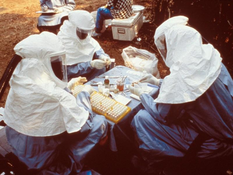 Kongo: Das Ebolavirus kehrt zurück