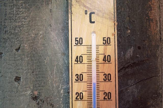 Verbrannte Erde: Über die Hitze und den Klimaschutz in Österreich