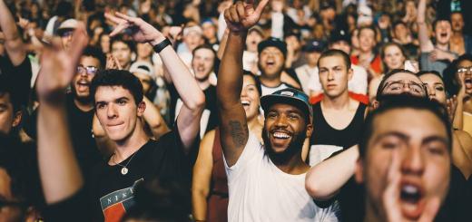 Menschen in einem Stadion jubeln. (Foto: Nicholas Green, Unspalsh.com)