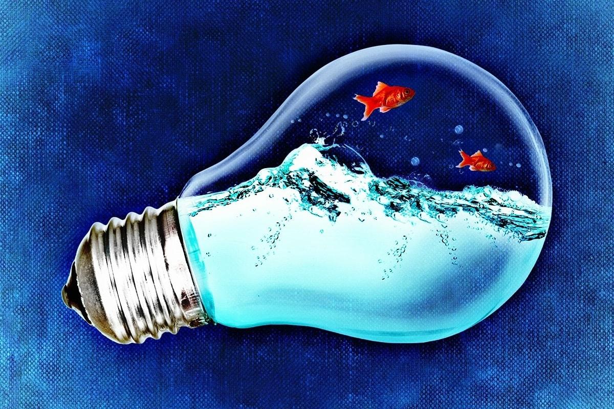 Goldfische in einer Glühbirne. (Illustration: Alexas_Fotos, Pixabay.com; Creative Commons CC0)