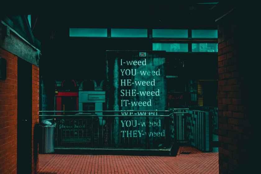 Cannabis: Droge oder Medizin?