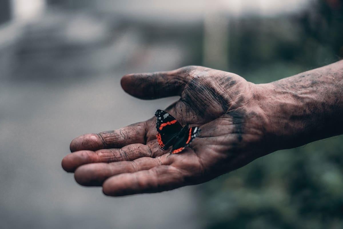 Ob der Schmetterling in der Hand eines Arbeiters Wohlbehagen auslöst? (Foto: Elijah ODonnell, Unsplash.com)