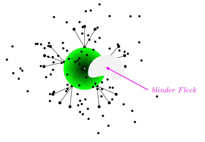Blinder Fleck. (Grafik: Gerhard Kugler)