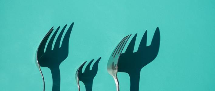 Souveränität ist eine zentrale Frage allen Seins. Gabeln werfen Schatten an eine Wand. (Foto: Ursula Spaulding, Unsplash.com)