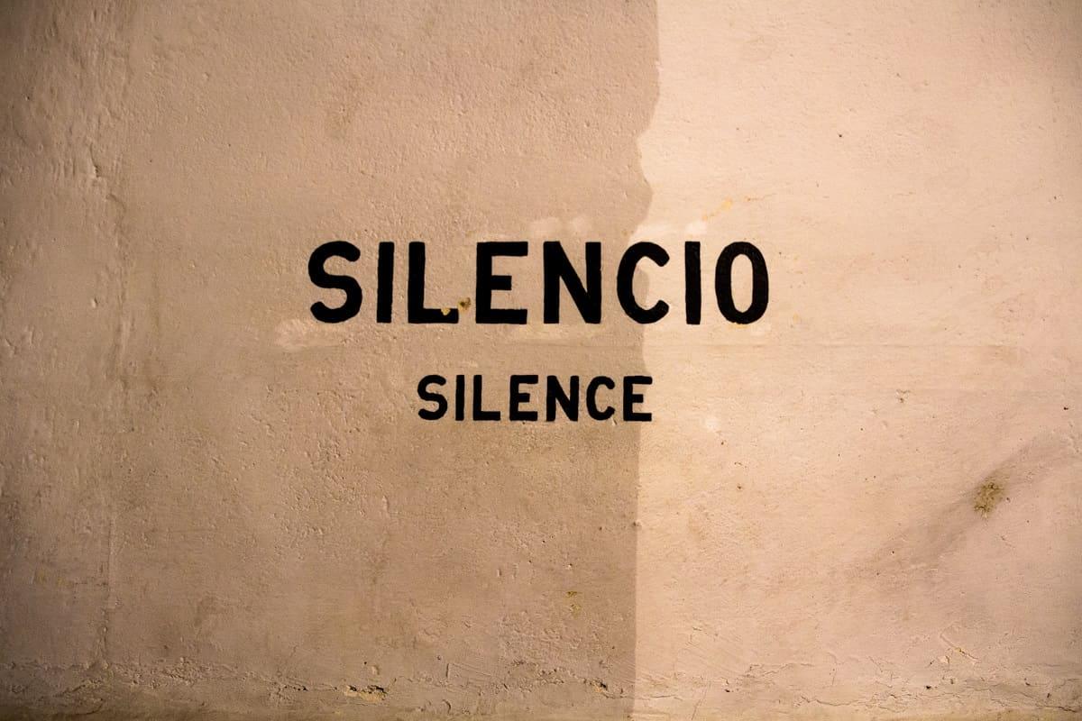 Nie wieder Faschismus ist eine klare Botschaft, wie auch Silencio, silence an einer Hauswand in Mexiko. (Foto: Scott Umstattd, Unsplash.com)