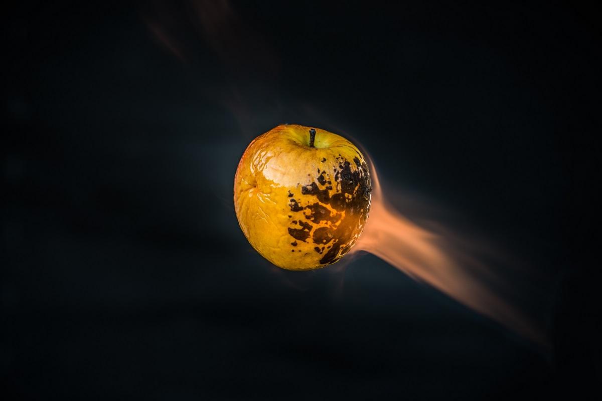 Die Demokraten und Trump auf gleicher Flugbahn wie ein brennender Apfel. (Symbolfoto: Olivier Miche, Unsplash.com)