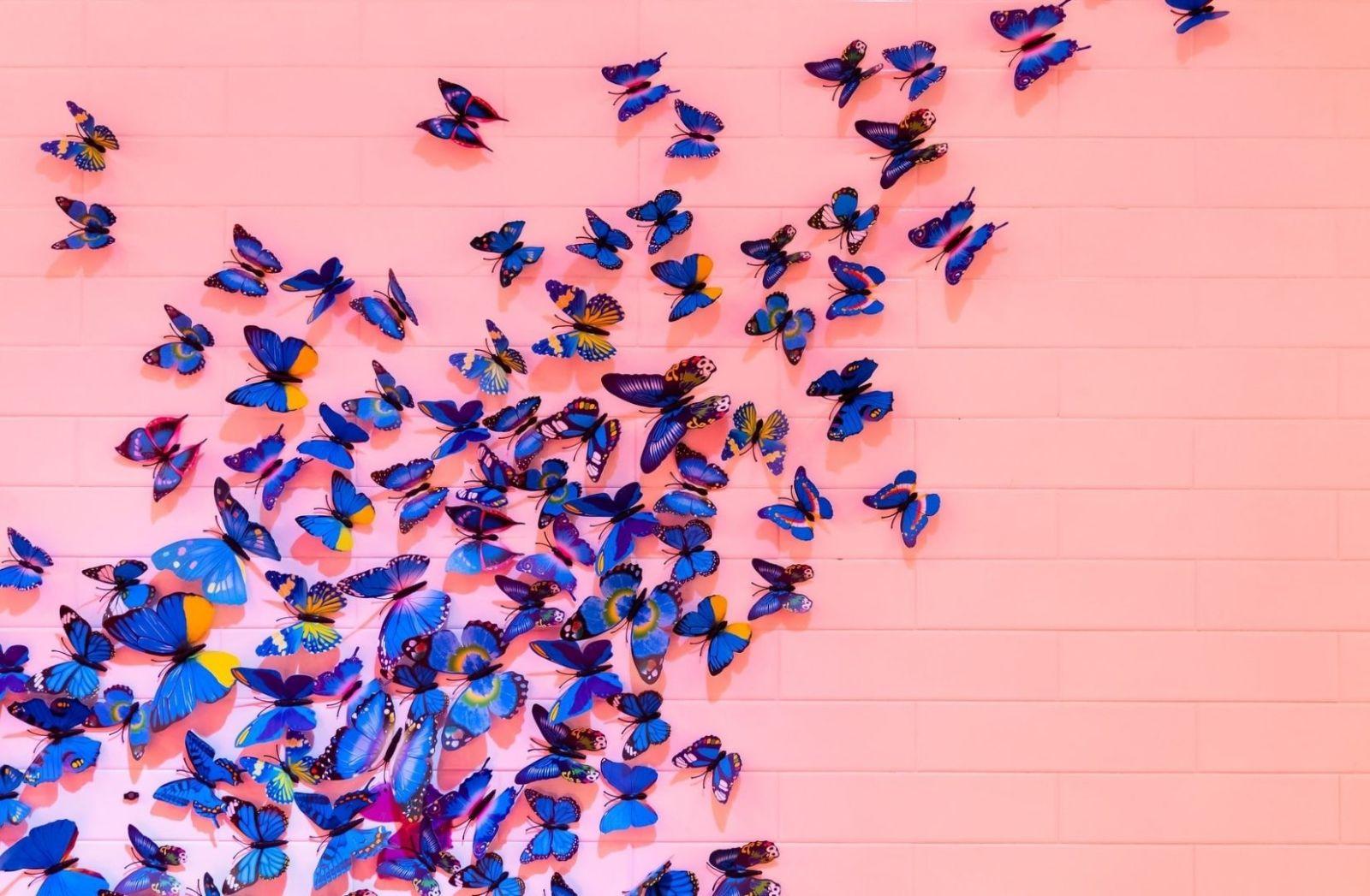 Der Flügelschlag der Schmetterlinge als Vision. (Foto: Drz, Unsplash.com)