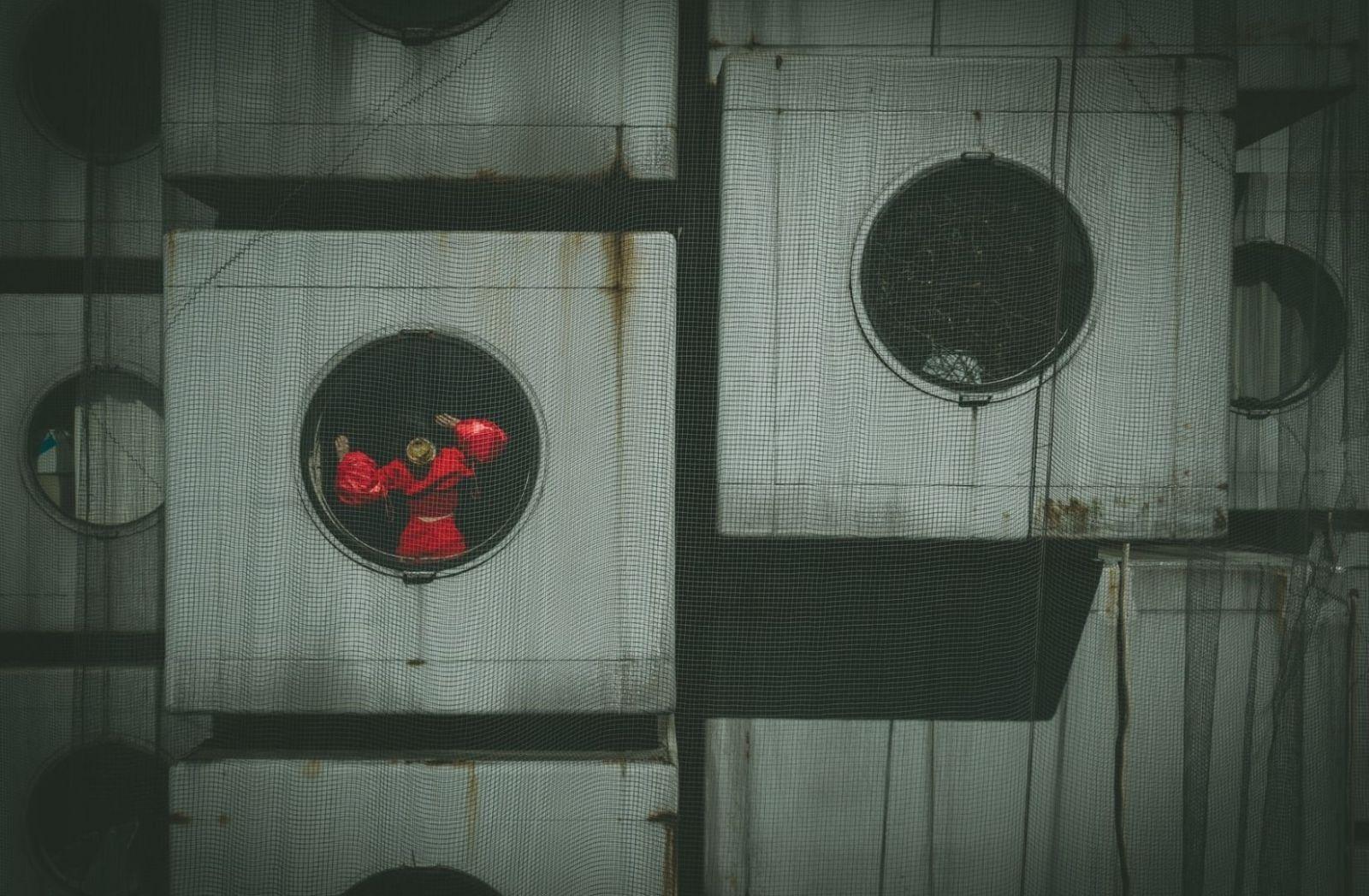 Eine Aufnahme aus Japan, ein Nachbar von Russland. (Foto: Denys Nevozhai, Unsplash.com)
