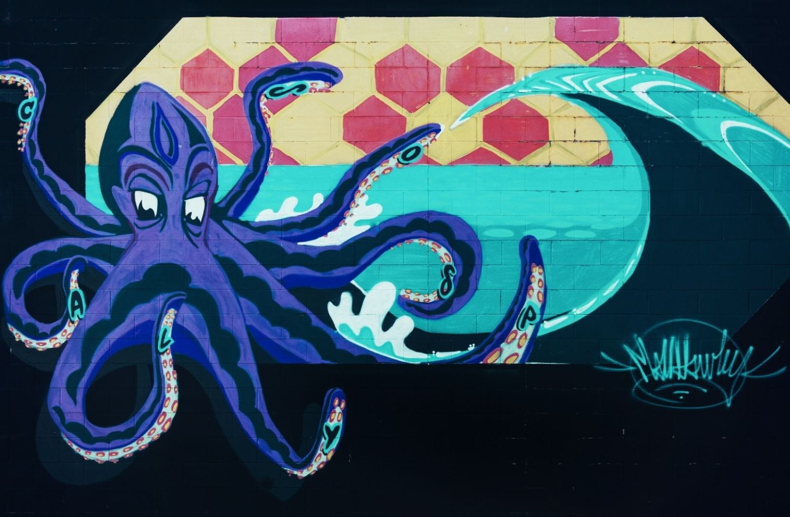 Ein Krake reagiert wie man ihn führt. (Foto: Tim Mossholder, Unsplash.com)