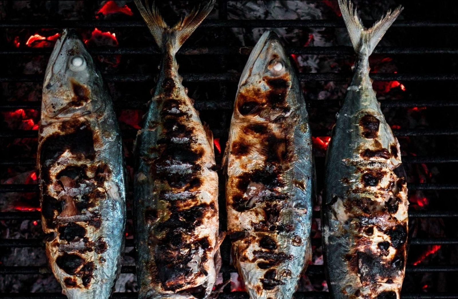 Fische auf einem Grill. (Foto: Clint Bustrillos, Unsplash.com)