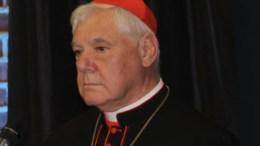 Kardinal Müller (Foto: Heselmann)