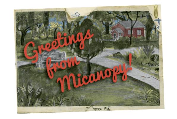 Eine Postkarte aus Micanopy