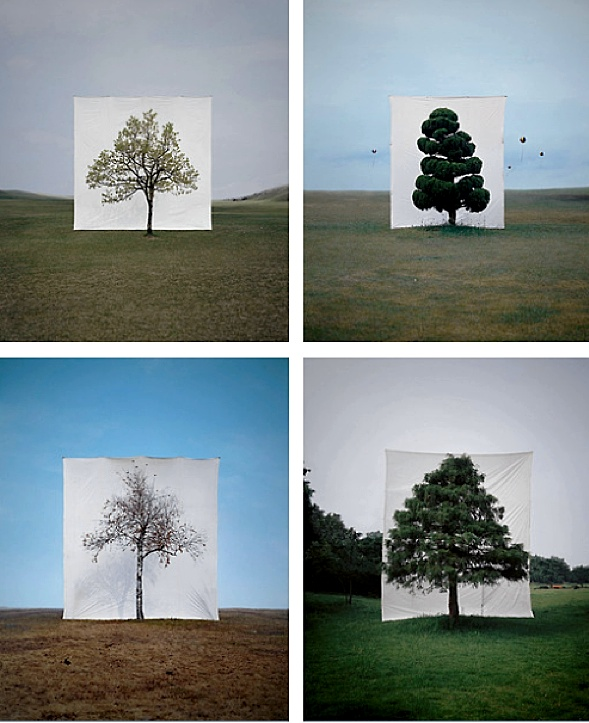 Slavoj Žižek. Tree series by Myou Ho Lee.