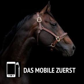 Das Mobile zuerst
