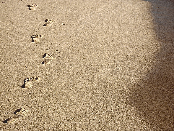 footsteps via ngleaders