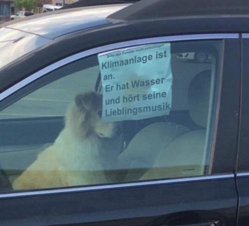 Wochenendpläne via this isn't happiness™