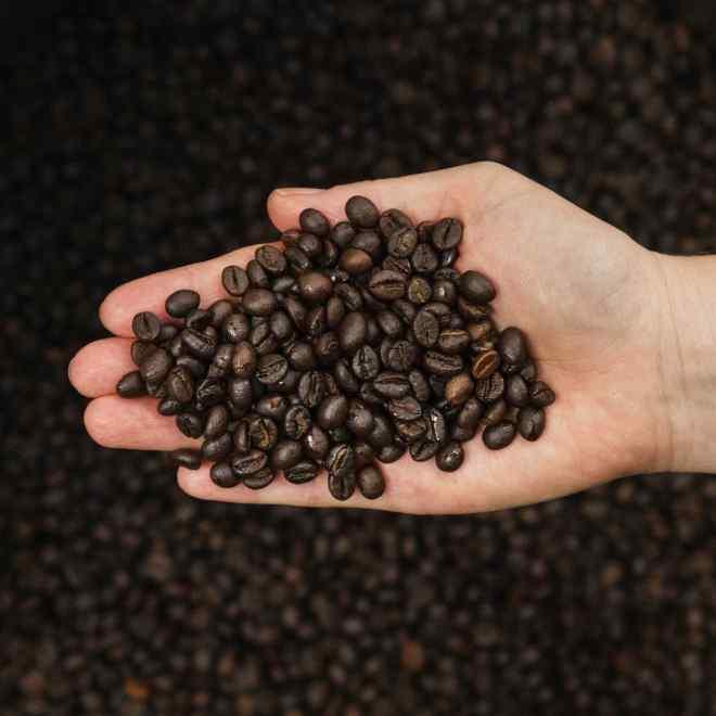 Robusta Kaffee, dunkel geröstet
