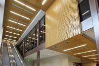 Wood Ceilings - Woodwright Natura Plank and Tile from ...