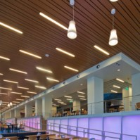 Metal Ceilings - Woodwright Multi-Box Series ceiling system