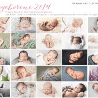 Jahresrückblick Neugeborenenfotos 2014