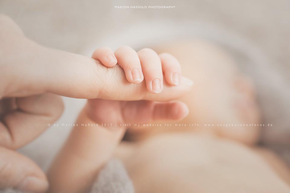 Neugeborenenfotos_by-MarionHassold-19