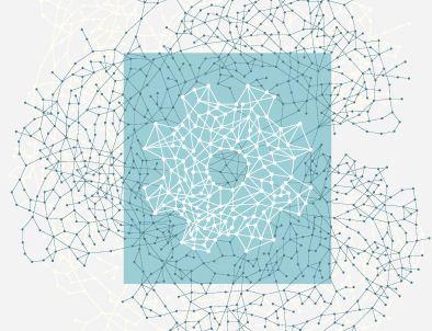 Facebook im Mittelpunkt des Netzes